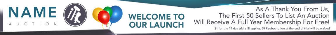 NameIt.Auction Launch Banner
